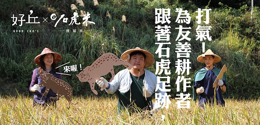 隨石虎足跡,到石虎米產地見學為友善生產者打氣